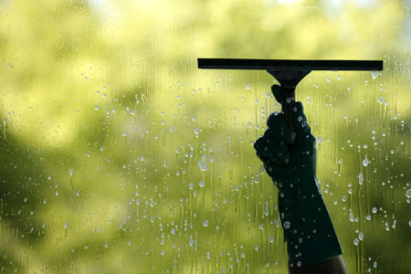 Niagara Window Washing Services